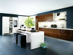 Contemporary Walnut Kitchen Cabinets - kitchen room 2017 kitchens remodeling layouts unique barstools