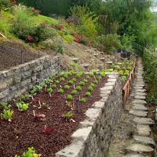 charming garden design ideas with stone edges backyard vegetable