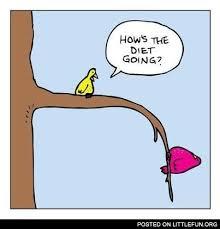 Meme Diet - littlefun how s the diet going