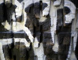 free images rock creative wood urban new york wall