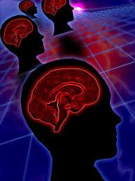Human Anatomy Careers Right Brain Careers Woman
