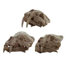 Skull Decor Resin Animal Faux Skull Decoration Apollobox