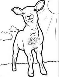 how to draw a sheep how to draw pinterest simple sketches a