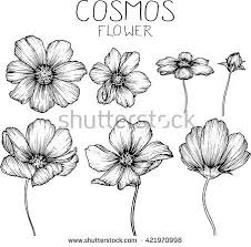 flowers for drawing best 25 simple flower drawing ideas on