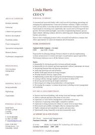 ceo resume template ceo cv sle setting strategy and vision policy