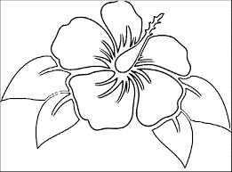coloring pictures of hibiscus flowers awesome hawaiian flower coloring pages collection printable