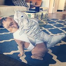 Frenchie Halloween Costume 66 Shark Dog Frenchie Halloween Costume