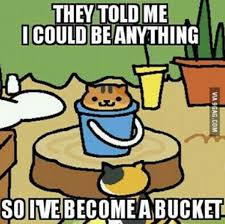Meme Neko - the best memes for everyone who s obsessed with neko atsume i can