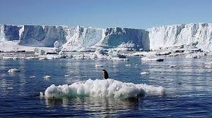 imagenes de la antartida la antártida un observatorio excepcional del cambio climático