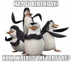 Penguin Birthday Meme - penguin birthday memes wishesgreeting