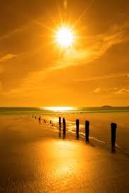 Sunset Orange by 1867 Best Sunrise U0026 Sunset Images On Pinterest Sunset Sun And