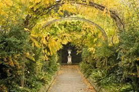 the regent u0027s park and primrose hill the regent u0027s park the