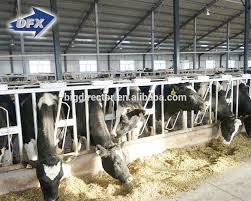 list manufacturers of cow farm building buy cow farm building