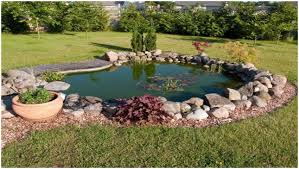 backyards impressive backyard pond design small garden pond