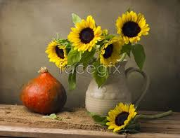 Vase Of Sunflowers Vase Of Sunflowers Picture U2013 Over Millions Vectors Stock Photos
