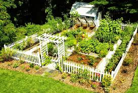 What To Plant In Spring Vegetable Garden by How To Prepare Your Garden For Spring Planting