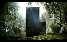 home designer architectural forest pond house by tdo architecture 13 homedsgn loversiq