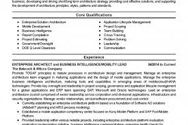 Enterprise Architect Resume Sample by Carpenter Resume Builder Reentrycorps