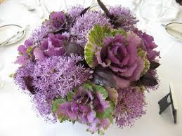 32 best ornamental cabbage kale images on ornamental