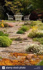 Summer Garden Plants - typical english garden plants flowers and garden path stone slabs
