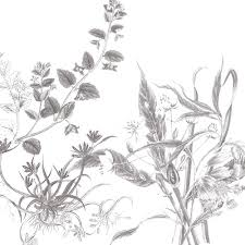 sketched flowers 3 of 3 by alcoholicwhine on deviantart