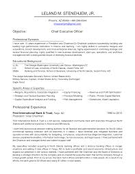 Executive Officer Resume Chief Credit Officer Resume Sales Officer Lewesmr
