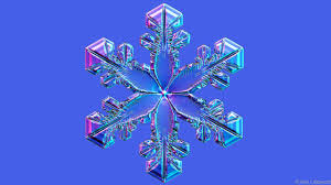 bbc earth one man has spent 15 years photographing snowflakes