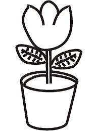 plant coloring pages plant coloring pages coloring pages to