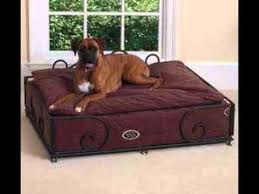 top 3 highest quality dog beds for large dogs youtube