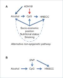 epigenetic epidemiology of common complex disease prospects for