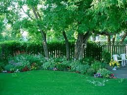 Shady Garden Ideas Hill Nursery Flowering Plants Shrubs Shade Plants