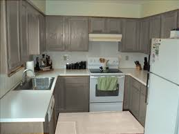 gray cabinets and white appliances those are my exact cabinets