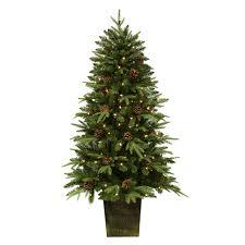 trim a home 5 pre lit potted silver oak pine tree