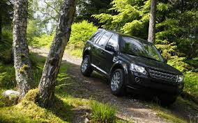 jeep land rover freelander jeep land rover suv forests wallpaper allwallpaper in