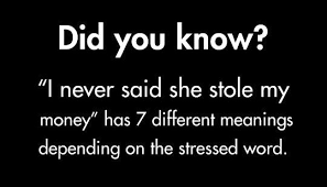 i never said she stole my has 7 different meanings fact
