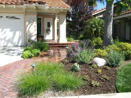 front yard drought resistant landscaping onlinemarketing24 club