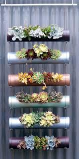 Wall Garden Ideas by Download Succulents Vertical Garden Solidaria Garden