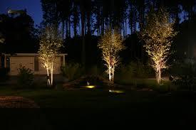 Landscape Lighting Trees Landscape Up Lighting Crafts Home