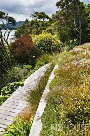 native plants nz 44 best gardens images on pinterest life styles house gardens