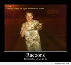 Funny Meme Posters - racoon demotivational poster by csor1120 meme center