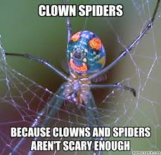 Funny Spiders Memes Of 2017 - club giggle brings you 20 funny pictures for the day of 7 13 17
