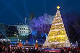 christmas tree at christmas tree lighting president revives the