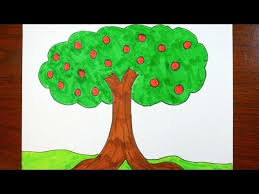 apple tree coloring pages drawing an apple tree coloring page for kids youtube