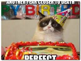Birthday Animal Meme - funny happy birthday animal meme rusmart org