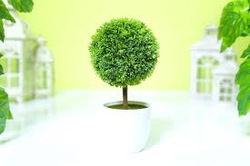 Topiary Balls With Flowers - artificial garden palm trees artificial topiary tree amp ball