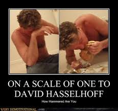 David Hasselhoff Meme - on a scale of one to david hasselhoff very demotivational
