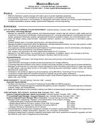 It Management Resume Examples by Resumes And Cover Letters
