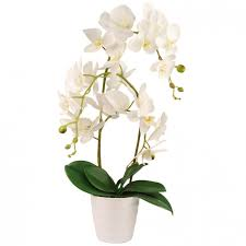 flower orchid artificial orchid flower poundstretcher