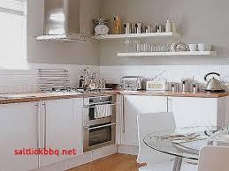 facade meuble cuisine ikea pour idees de deco de cuisine