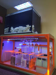 Aquascape Online Do You Have Nice Aquascaping If So Let U0027s See It Page 25